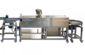 Continuous Fryer FB FFD 350 for the production of vegetable balls