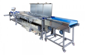 Continuous Fryer FB FFD 600 for the production of fries